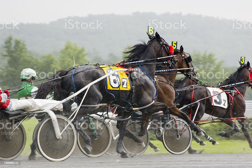 close race royalty-free stock photo