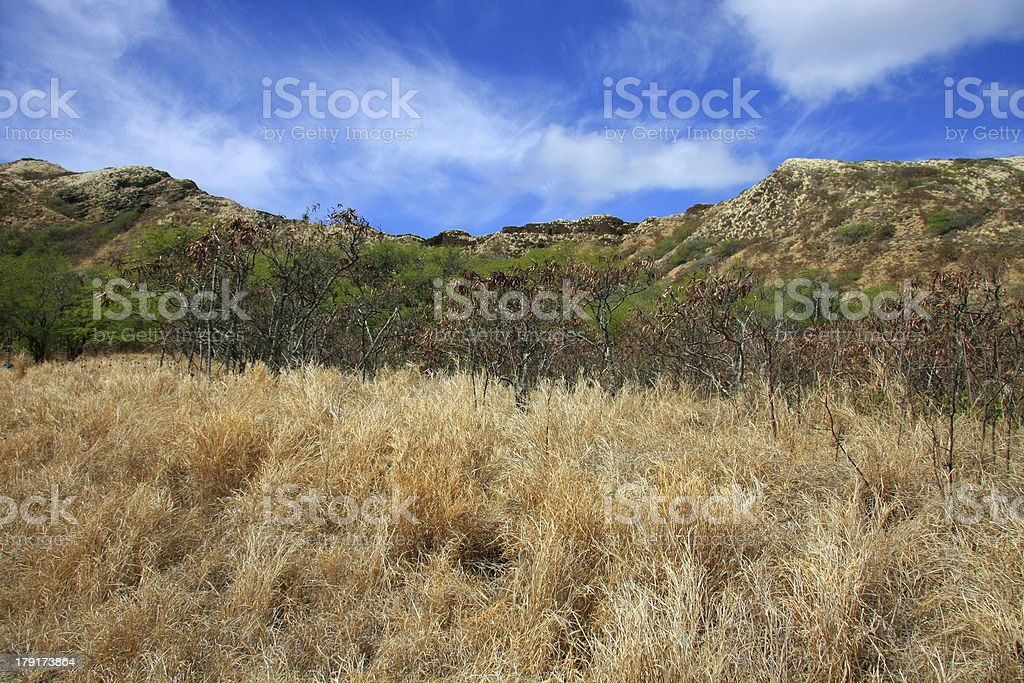 Close to the crater royalty-free stock photo