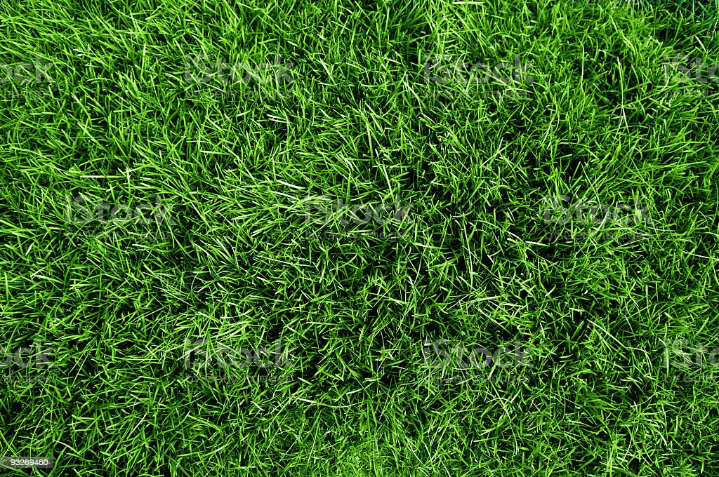 Close up aerial view of the grass on a soccer field  stock photo