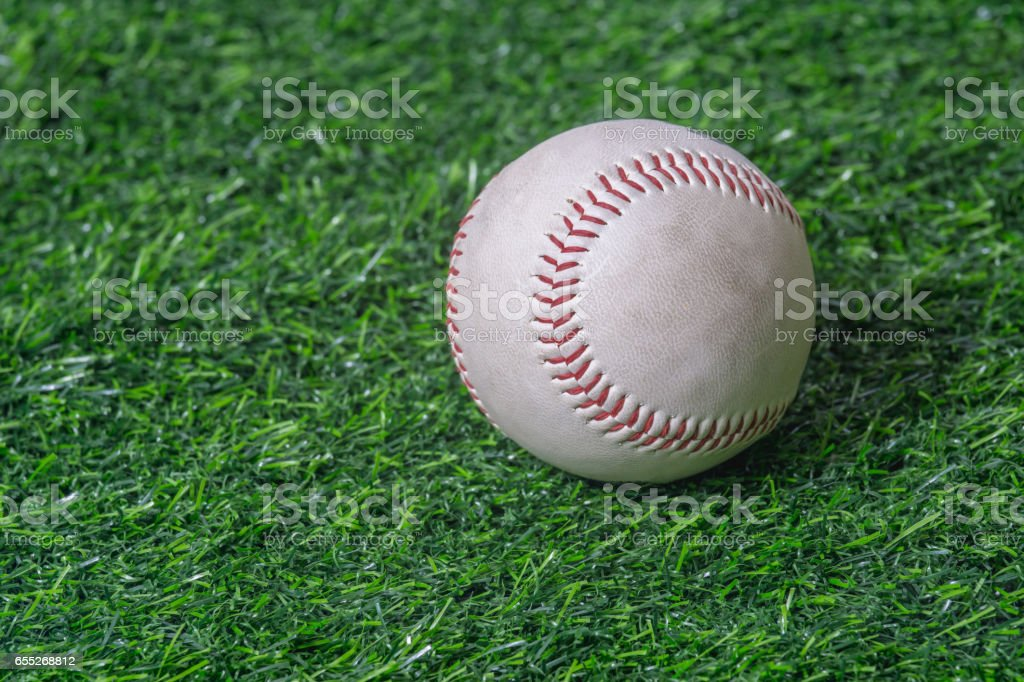 Close up baseball on the green lawn stock photo