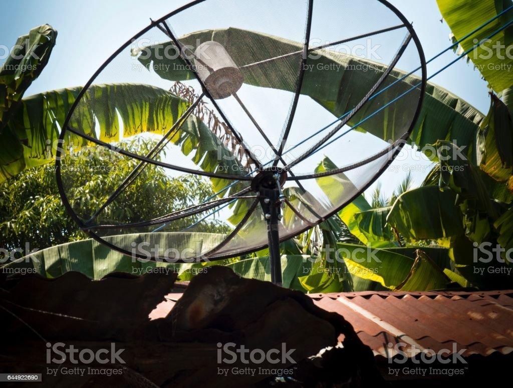 Close up :Black Satellite on Banana Garden Background stock photo