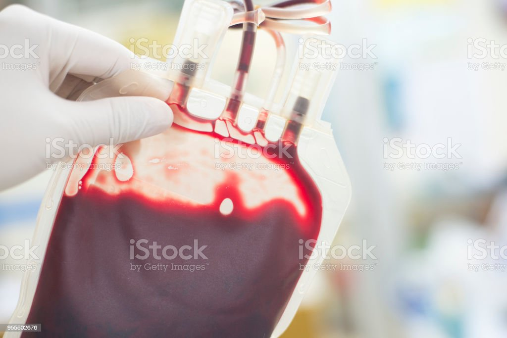 close up blood bag in laboratory medical concept. stock photo