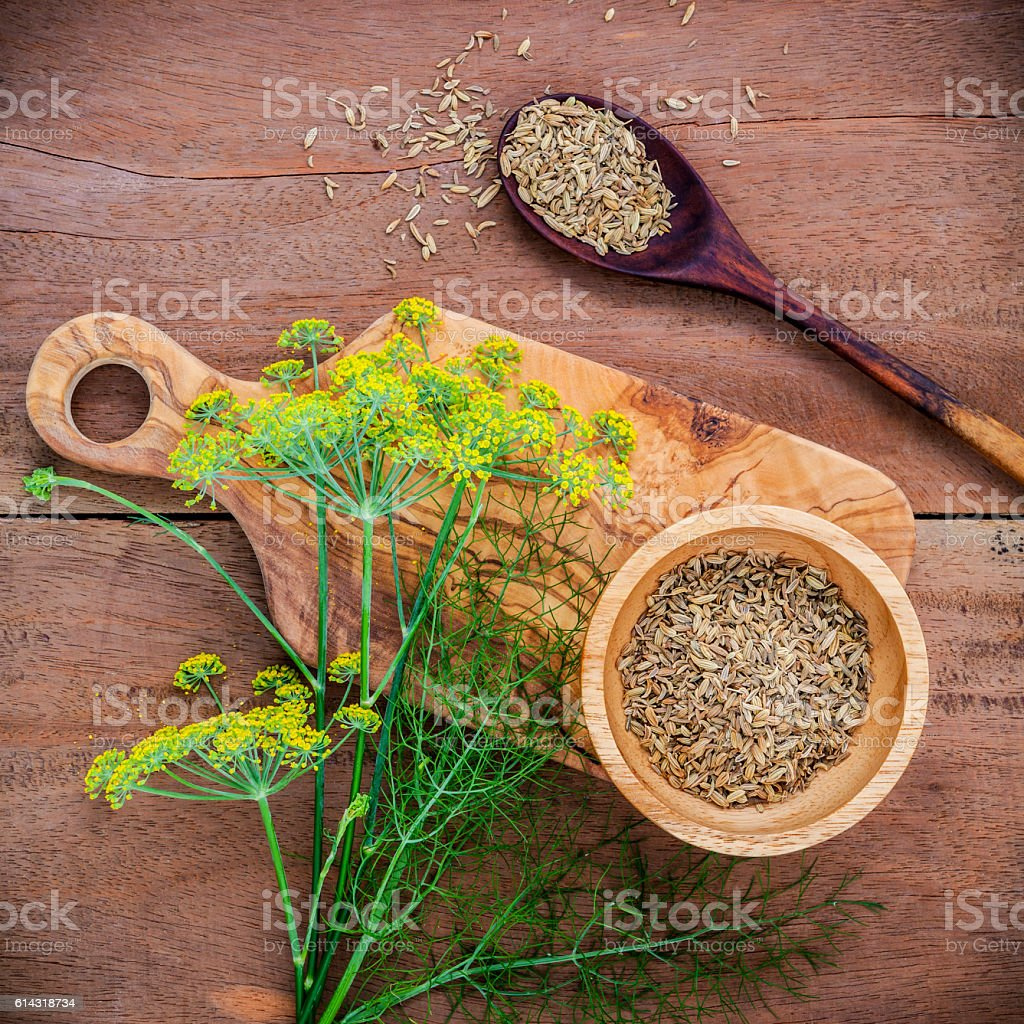 Close up blossoming branch of fennel and dried fennel seeds. stock photo