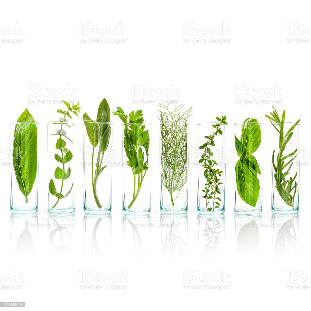 Close Up bottles of aromatic herbs . stock photo