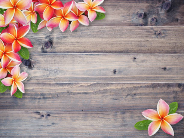 close up brown wood textured and background - hawaiian flowers stock photos and pictures