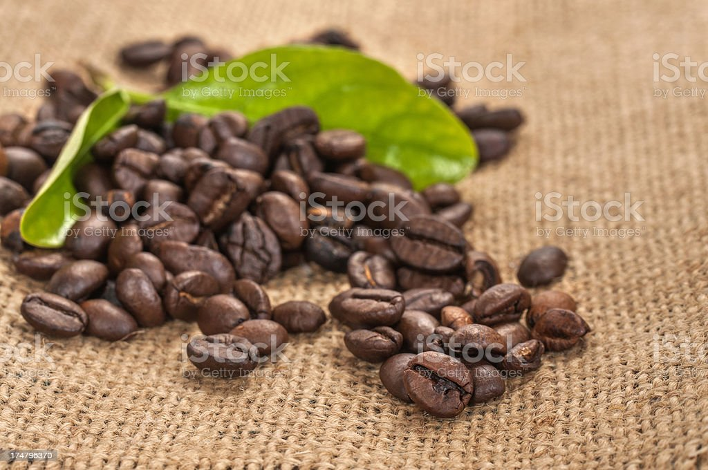 Close up coffee beans with leaves stock photo