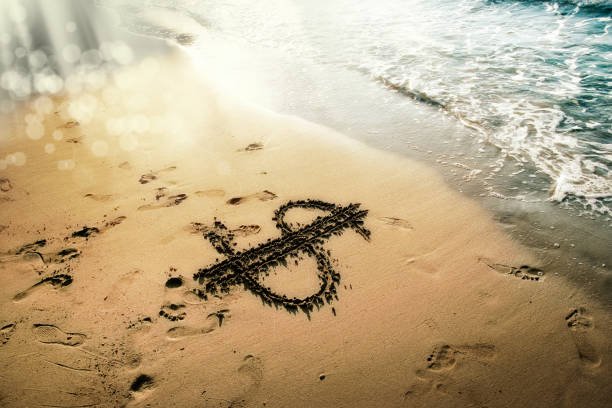 close up dollar sign drawing on golden color sandy beach stock photo