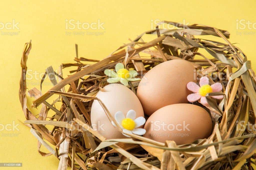 Close up, macro. Easter celebration. Brown eggs in a nest of straw....