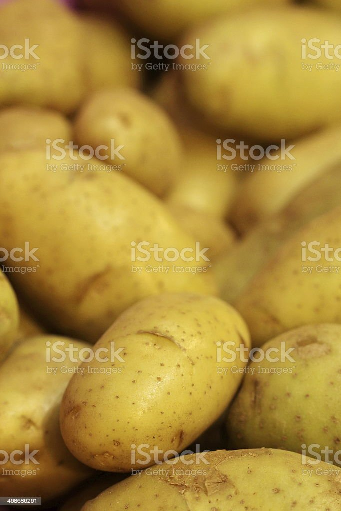 close up fresh potato in market stock photo