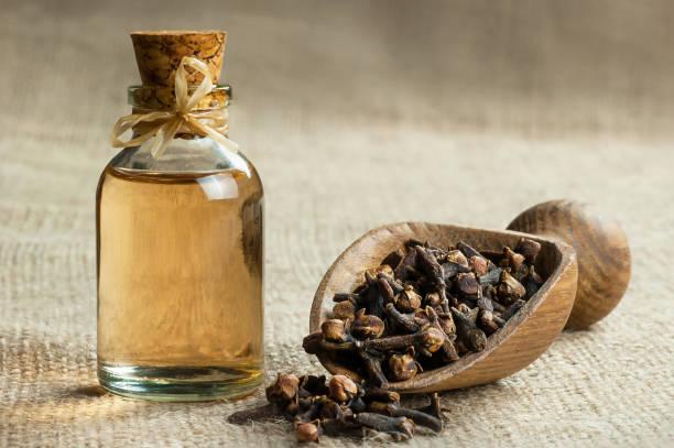 close up glass bottle of clove oil and cloves in wooden shovel on burlap sack - pączek etap rozwoju rośliny zdjęcia i obrazy z banku zdjęć