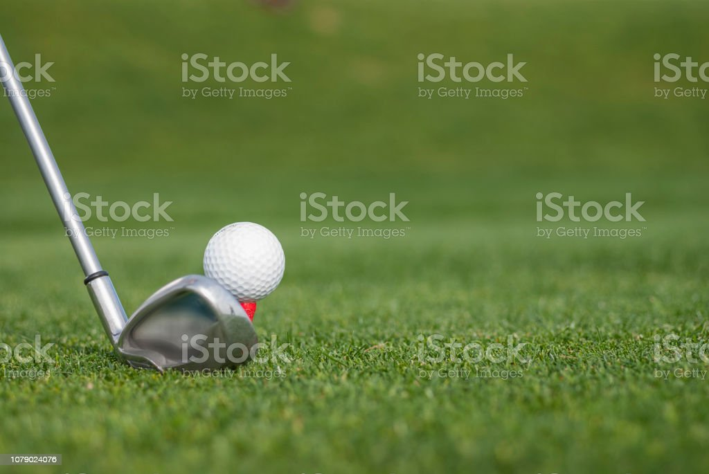 Golf ball on green grass ready to be struck at golf club.