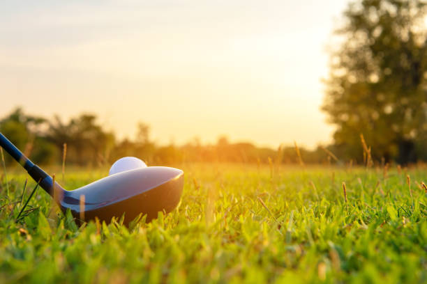 close up golf ball and driver, player doing golf swing tee off on the green sunset evening time, presumably does exercise.  healthy and lifestyle concept. - golf foto e immagini stock