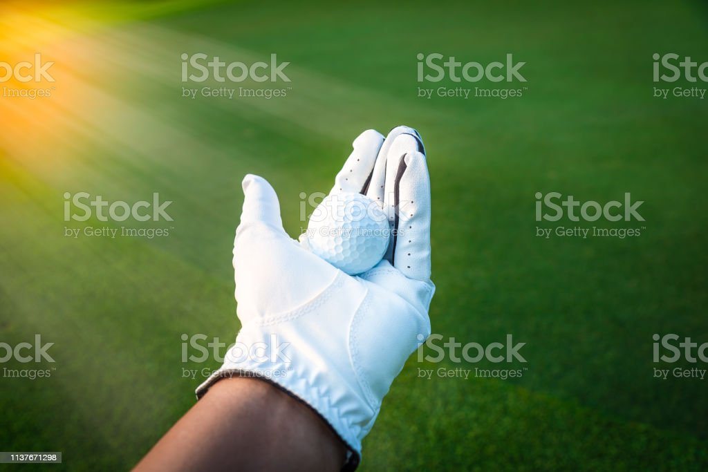 Close up golf ball in golf glove hand with green grass and sunlight...