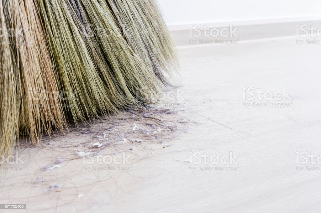 Close up hair and dust in the bedroom stock photo