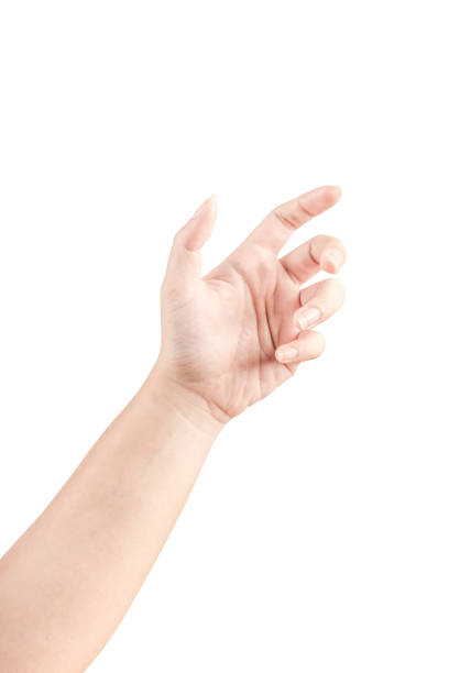 close up hand and arm  on white  background. - human hand stock photos and pictures