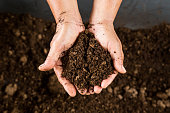 istock close up hand holding soil peat moss 489871228