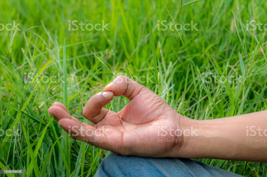 Close up hands, yoga outdoor, exercising vital and meditation for...