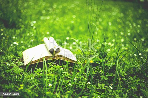 istock Close up heart shape from paper book on grass field 544656448