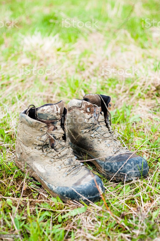 Close Up Hiking Boots On The Grass Stock Photo Download