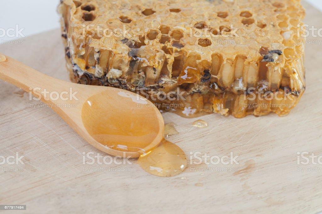 close up honeycomb and honey on  background royalty-free stock photo
