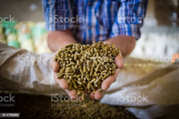 Close up image of hands holding animal feed at a stock yard picture id914759392?b=1&k=6&m=914759392&s=612x612&h=wenmdkcpi c5rdbrr6uamvesl yavyo47baggb882ma=