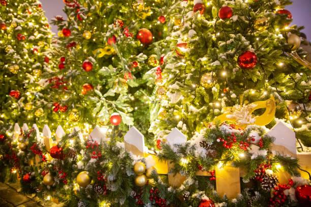 Nahaufnahme Bild von beleuchteten Weihnachtsbäumen mit Girlanden, Lichtern und Bällen auf defokussiertem Hintergrund – Foto