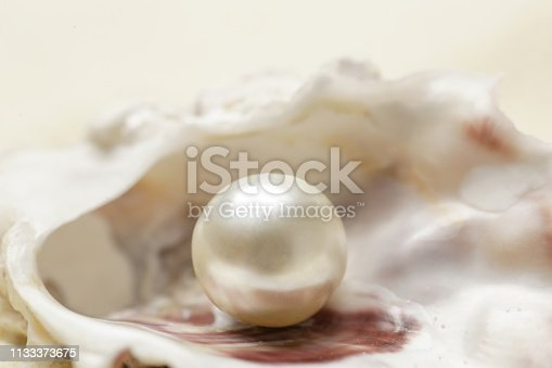 Close up image of organic pearl in a shell