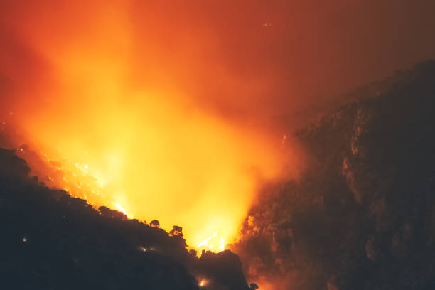 Close up look of a fire at a forest in Loutraki in Greece. stock photo