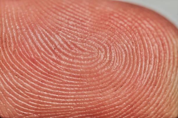 Nahaufnahme Makrobild eines menschlichen Fingers. – Foto