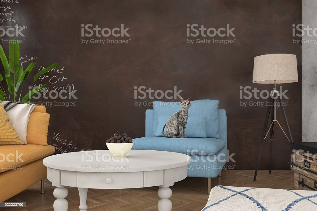 Close up of a blue armchair with a cat - foto de stock