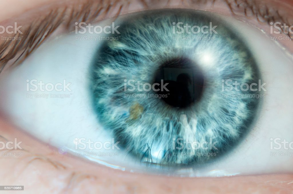 Nahaufnahme von einem blauen Auge – Foto