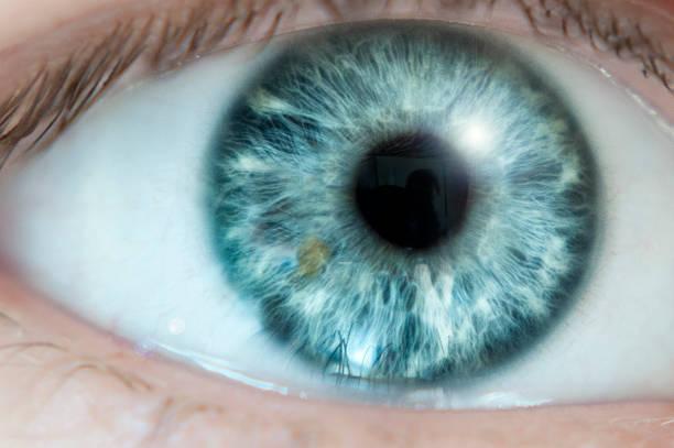 gros plan de l'oeil bleu - yeux bleus photos et images de collection