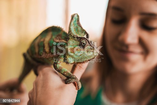 Close up of a woman holding a chameleon in her hand.