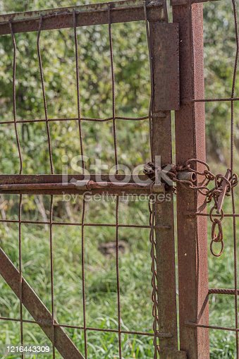 Close up of a completely rusty metal door closed with a chain with green vegetation in the background, sunny day in the Netherlands Holland