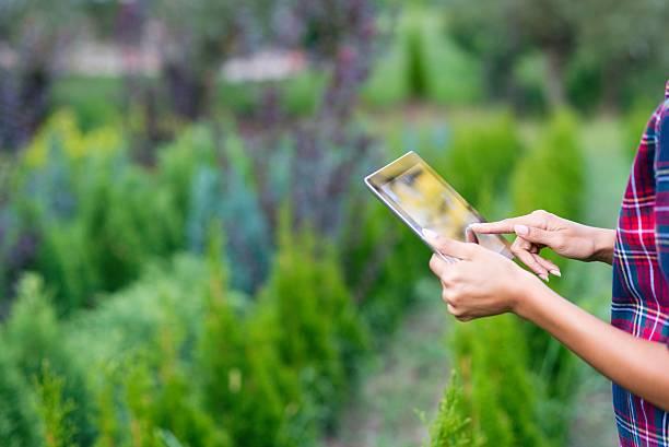 close up of a digital tablet - garden types stock-fotos und bilder