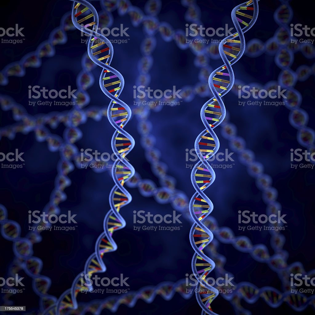 A close up of a DNA strand for science and medicine royalty-free stock photo