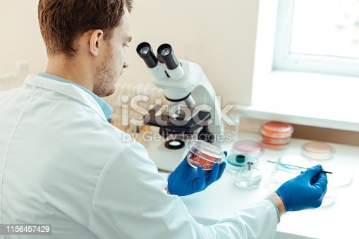 istock Close up of a petri dish in male hands 1156457429