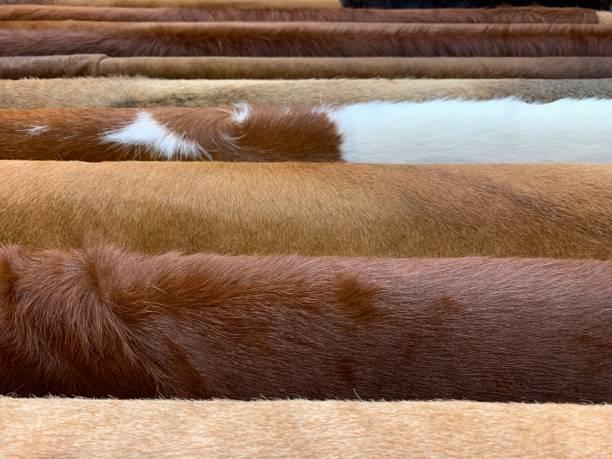 nahaufnahme einer synthetischen pelztextur getönt - fuchs kissen stock-fotos und bilder