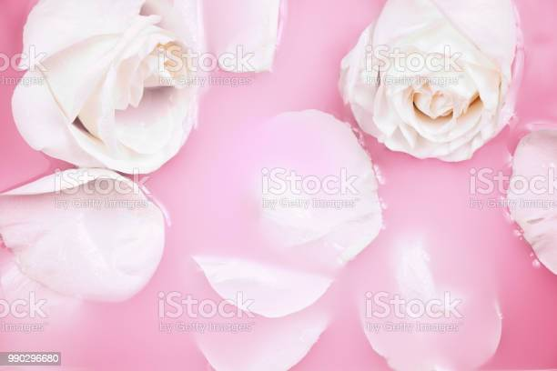 Close up of a white roses and petals in pink milky water beauty spa picture id990296680?b=1&k=6&m=990296680&s=612x612&h=6ifqb4natg c6idnmvdk5l1zrx  jqleyvibvr5ixv0=