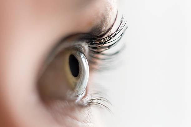 Nahaufnahme von einem weiblichen Auge sehen sich – Foto