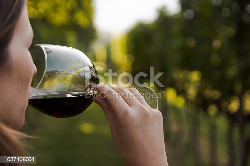 girl holding a wine glass surrounded by grapevines