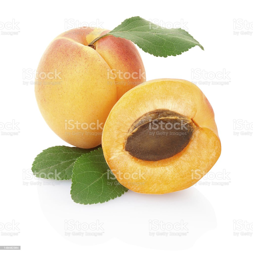 Close up of apricot with leaves and pit stock photo