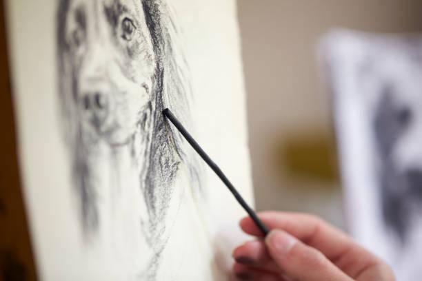 close-up do artista sentado no cavalete desenho foto do cão em carvão vegetal - cachorro desenho - fotografias e filmes do acervo