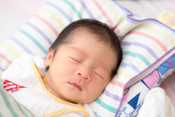 Close Up of Asian Baby Sleeping in Trellis stock photo