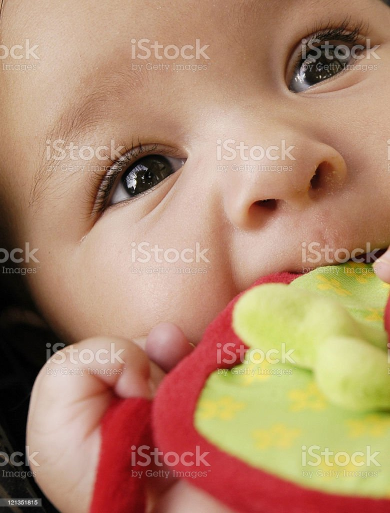 Close Up of Baby Teething stock photo