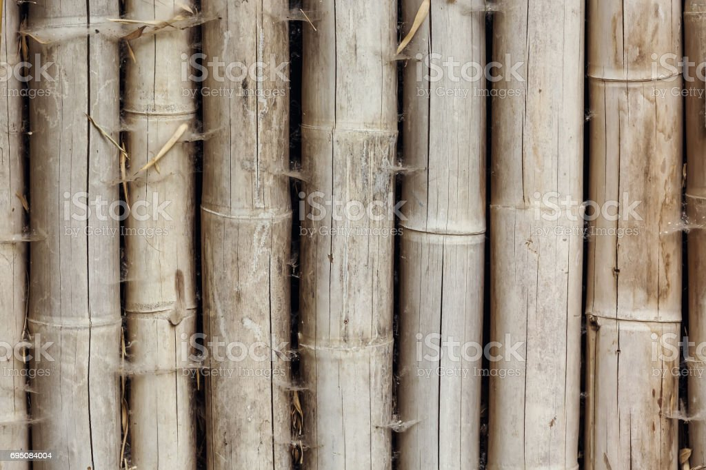 Close up of bamboo wood background texture stock photo
