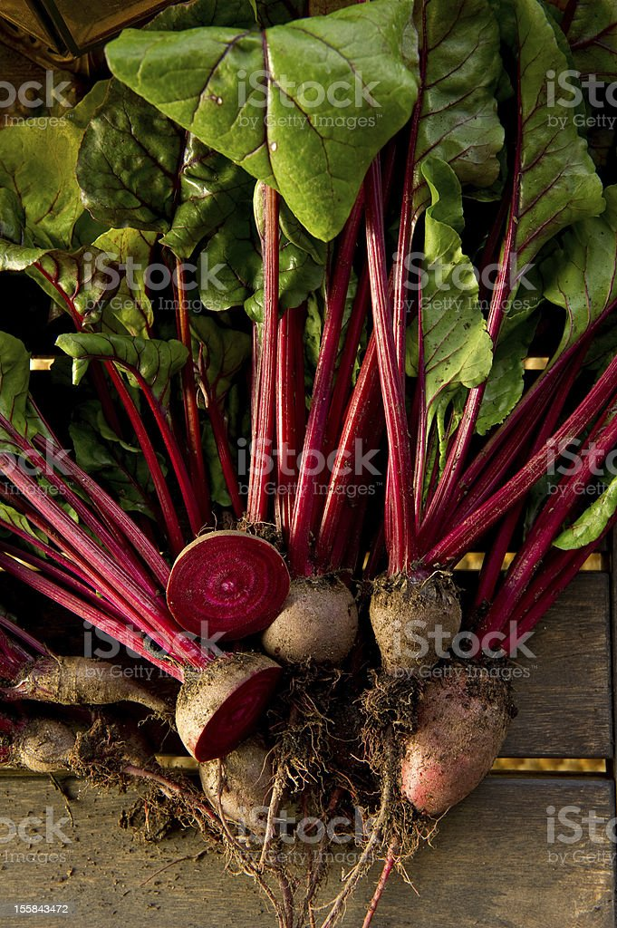 Close up of Beets royalty-free stock photo