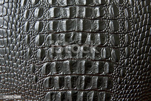 Close up of black snake or crocodile skin texture. large scales. for decoration and design