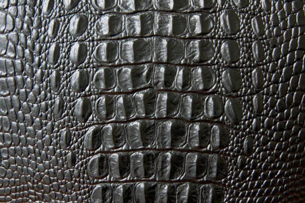 Gros noire texture peau de serpent ou crocodile. grandes écailles. pour la décoration et de design - Photo