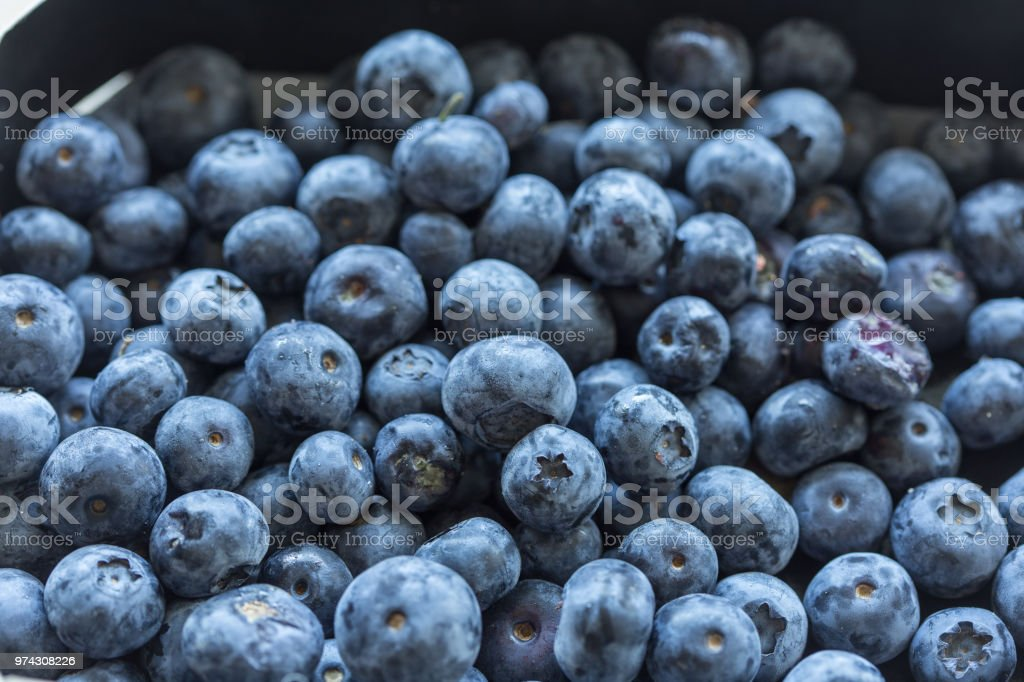 Close up of blueberries stock photo